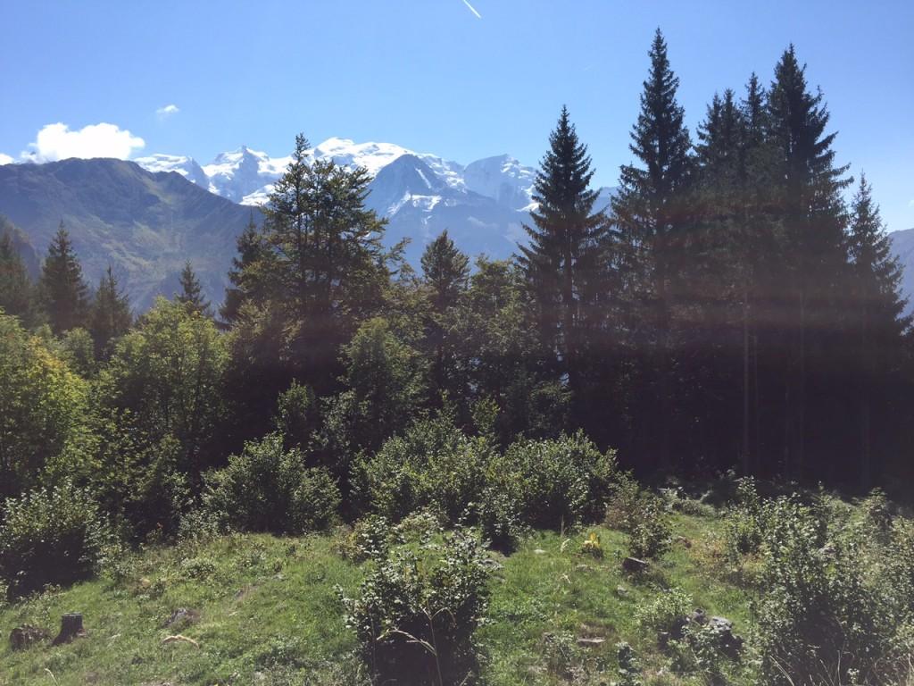 Vue sur le massif du Mont Blanc à la sortie de la forêt